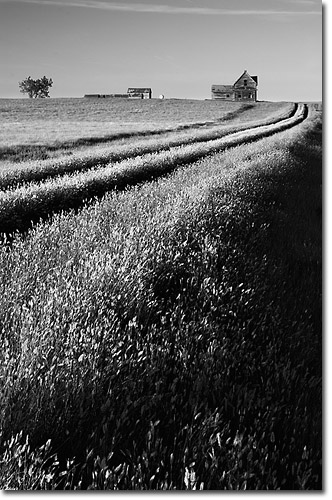 Tonal contrast is easily seen in monochromatic images such as this rural scene but tonal contrast is a part of colour images as well see in a moment