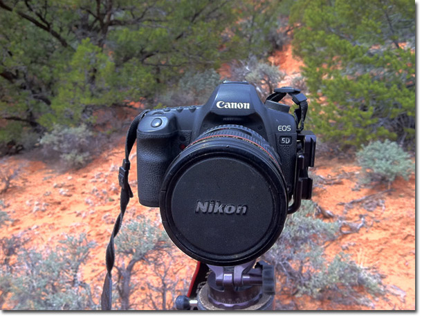 gt0511-1 Awesome Nature Photography Camera @capturingmomentsphotography.net