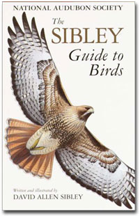 Buy The Sibley Guide to Birds at Amazon.com!